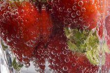 Free Bubbly Strawberries Stock Photo - 948400