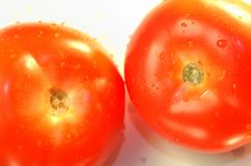 Free Tomatoes Royalty Free Stock Image - 948496