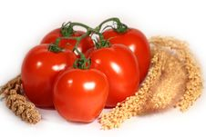 Free Fresh Tomatoes Stock Photo - 949590