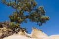 Free A Sandstone Peak Royalty Free Stock Photo - 9401745