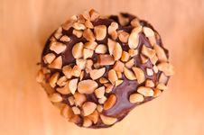 Muffin Muffin 1 Stock Photography
