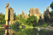 Free Stone Forest Royalty Free Stock Image - 9401856