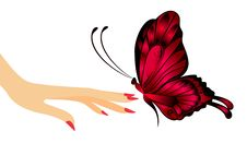 Free The Beautiful Butterfly Royalty Free Stock Image - 9401906