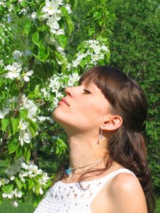 Brunette Beautiful Girl In Nature. Royalty Free Stock Image