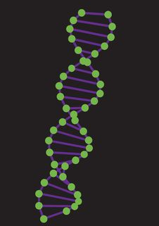 Free DNA Model Royalty Free Stock Image - 9403976