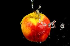 Free Fresh Water Splash On A Red Apple Royalty Free Stock Images - 9404359