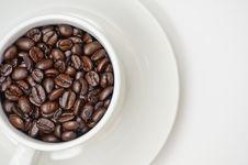 Free Coffee Crazy 2 Stock Photos - 9405663