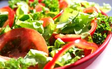 Free Vegetable Salad Royalty Free Stock Photo - 9407015