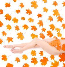 Free Autumn Beauty Royalty Free Stock Image - 9407656