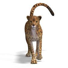 Free Big Cat Cheetaah Stock Photography - 9407702