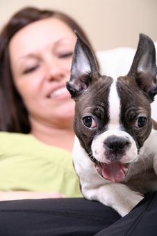 Free Woman With Boston Terrier Royalty Free Stock Photography - 9407747