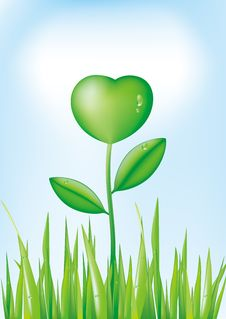Free Green Heart Royalty Free Stock Image - 9408206