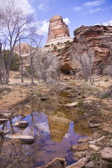 Free Escalante Wash Reflection Stock Image - 9408501