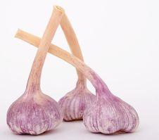 Free Purple, Garlic, Shallot, Ingredient Stock Images - 94000804
