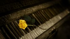 Free Piano, Yellow, Keyboard, Darkness Royalty Free Stock Images - 94000979