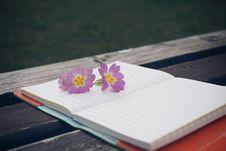 Free Flower, Petal Stock Image - 94006471