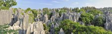 Free Stone Forest Royalty Free Stock Photo - 9410875