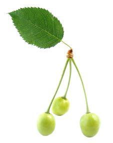 Free Three Cherries Stock Photography - 9411122