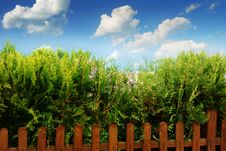 Free Clouds, Fence And Blue Sky Royalty Free Stock Photo - 9412895