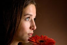 Young Woman With A Red Flower Stock Images