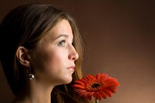 Young Woman With A Red Flower Royalty Free Stock Photography