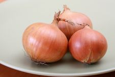 Free Onions Royalty Free Stock Photography - 9416747