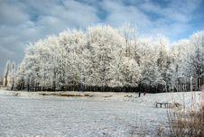 Free Winter Landscape Stock Image - 9417571