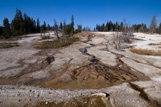 Brook In Yellowstone Stock Photo