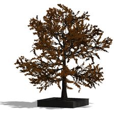 3D Render Of A Needle Beam Tree Stock Image