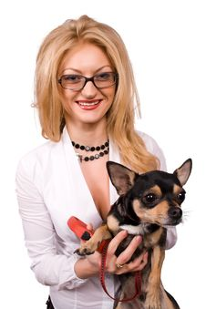 Blonde And Chihuahua Dog Isolated Stock Photos