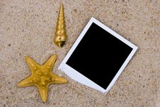 Free Photo Frame With Golden Sea Shells Stock Photos - 9420083