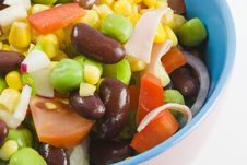 Free Fresh Garden Salad II Stock Image - 9420191