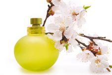 Free Bottle Of Perfume Stock Image - 9426841