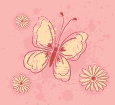 Free Butterfly Stock Photos - 9428213