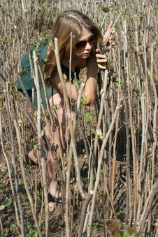 Free Girl Among Bushes Royalty Free Stock Image - 9429496