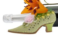 Elegant Lady Shoe With Champagne Stock Images