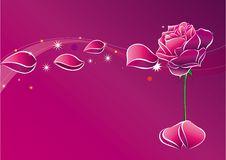 Free Rose Stock Photos - 9435123
