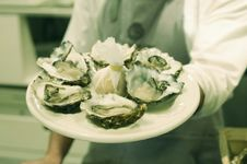 Free Oysters Royalty Free Stock Photos - 9435638