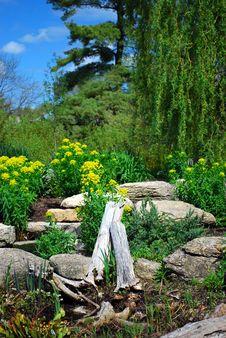 Free Spring Garden Stock Photography - 9436822
