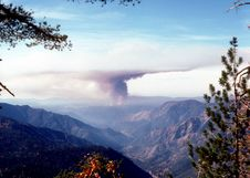 California Forest Fire Stock Photos