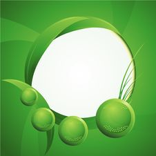 Free Green Leaf Environemental Background Stock Image - 9438111