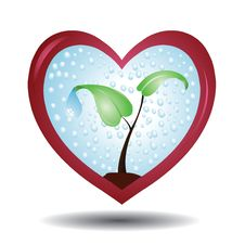 Free Plant In A Protective Love Shaped Glass Royalty Free Stock Photos - 9438118