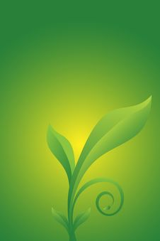 Free Green Floral Vector Stock Photos - 9443583