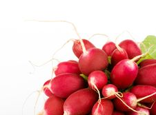 Free Fresh Radish Bunch Stock Photos - 9444323