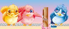 Free Little Bird Royalty Free Stock Photography - 9445587