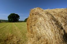 Free Idyllic Field With Hay Bales In Late Summer Stock Images - 9446984