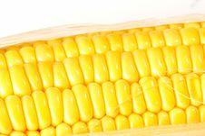 Free Corncob Stock Images - 9449114