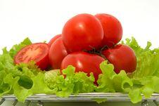 Free Tomato Royalty Free Stock Photos - 9449528
