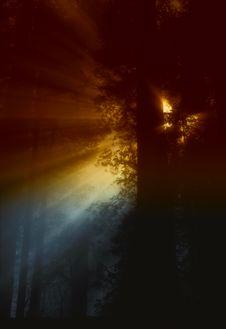 Free Atmosphere, Darkness, Sky, Phenomenon Stock Photo - 94494940