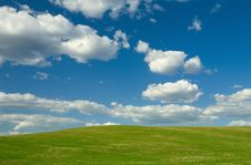 Free Spring Field Stock Images - 9454454